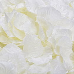 1000 шт./лот, лепестки роз, свадебные, искусственные шелковые цветы, украшения, свадебные, вечерние, цветные, 40 цветов, RP01 - Цвет: ivory