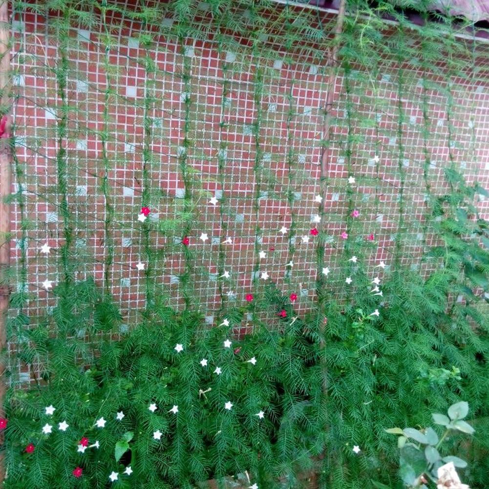 1.8*1.8 m jardín Millipore nylon Net escalada planta Marcos ...