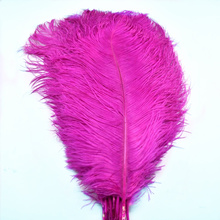 10 Pcs/Lot 15-70CM Rose red ostrich feathers for crafts plumes DIY natural feathers Home vase jewelry making Party decorative цена