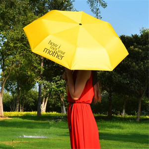 Travel Windproof Waterproof Li