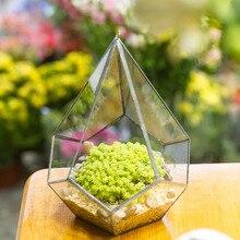 Modern Polyhedron Diamond Teardrop Shape Geometric Wall Mount Hanging Glass Planter Plant Succulent Flower Pot Glass Terrarium