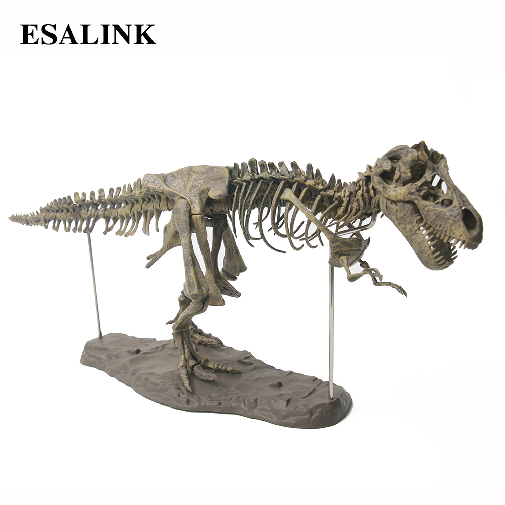 Large  Dinosaur Fossil Skull Animal Model  Toys  Tyrannosaurus rex Assemble the skeleton model Furnishing articles decoration big one simulation animal toy model dinosaur tyrannosaurus rex model scene