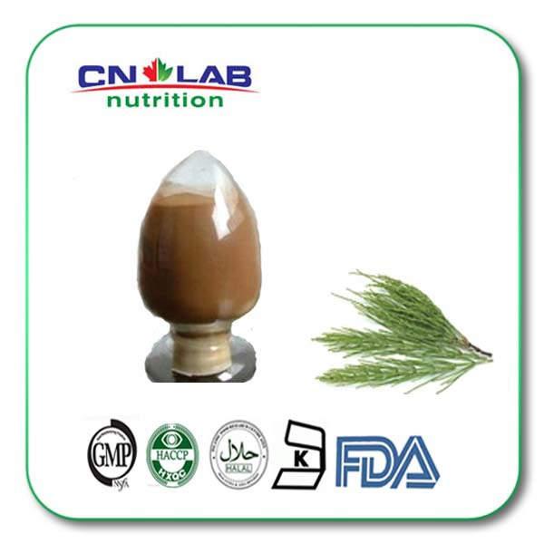 100% nature Pure Natural Plant Extract Horsetail P.E. стоимость