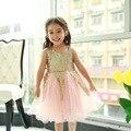 Tutú rosa y oro, Muchachas de La Flor de lentejuelas de Oro y rosa vestido, niñas vestido de fiesta, pascua de encaje tutu vestido, vestido tutú de las muchachas
