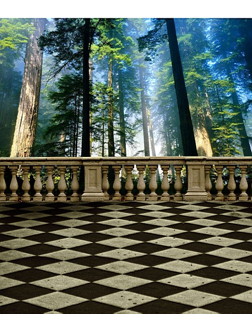 600CM*300CM background Stands tall trees photography backdropsvinyl photography backdrop 3337 LK 600cm 300cm background closed flowerpot ground photography backdropsvinyl photography backdrop 3300 lk