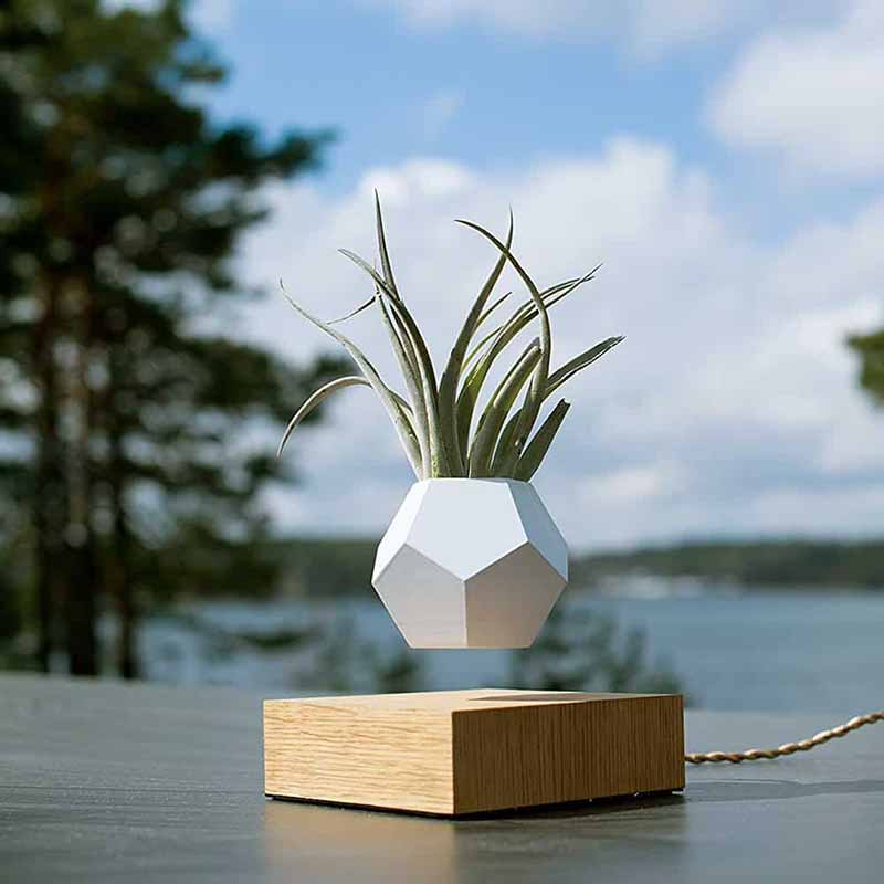 <font><b>Flower</b></font> <font><b>pot</b></font> <font><b>Magnetic</b></font> Levitating Plant <font><b>pot</b></font> Air Bonsai Levitating Bonsai Floating Plant Floating Bonsai Levitating Planter loronz image