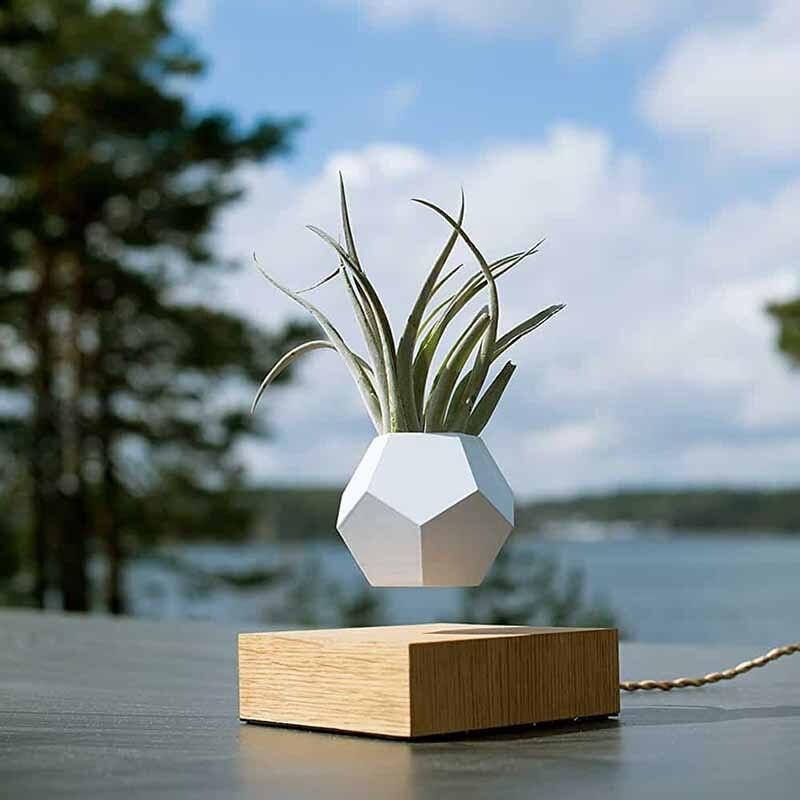 Flower Pot Magnetic Levitating Plant Pot Air Bonsai Levitating Bonsai Floating Plant  Floating  Bonsai Levitating Planter Loronz