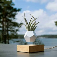Flower pot Magnetic Levitating Plant pot Air Bonsai Levitating Bonsai Floating Plant Floating Bonsai Levitating Planter loronz