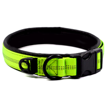 Buy  L Durable Heavy Duty for all breed 3 Color  online