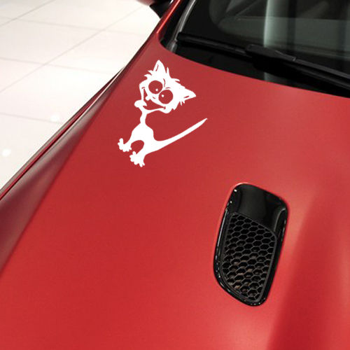 Removable Funny Crazy Dog Wall Sticker Vinyl Car Sticker Car Body - How to make vinyl car decals at home