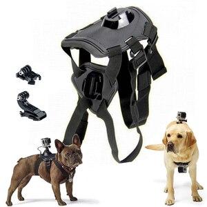 Adjustable Fetch Dog band for
