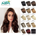 DHL 19 Color 100g Clip In Human Hair Extensions Grade 7A Brazilian Hair Clip in Extension Natural Hair Straight  8Pcs Hot Sale