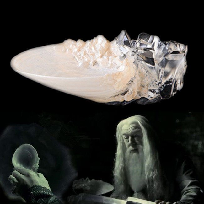 Professor Dumbledore Shell Cup Toy Action And Half-blood Prince Quality Version Limited Supply
