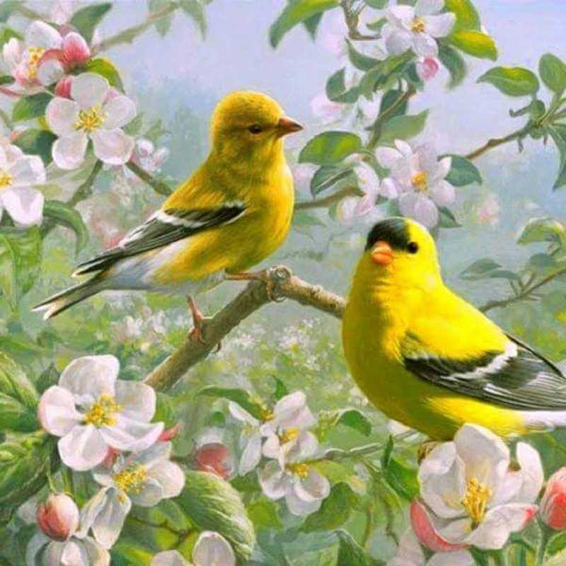 100% Full 5D Diy Daimond Painting Yellow Birds 3D Diamond Painting Full Rhinestones Diamant Painting Embroidery Decorations