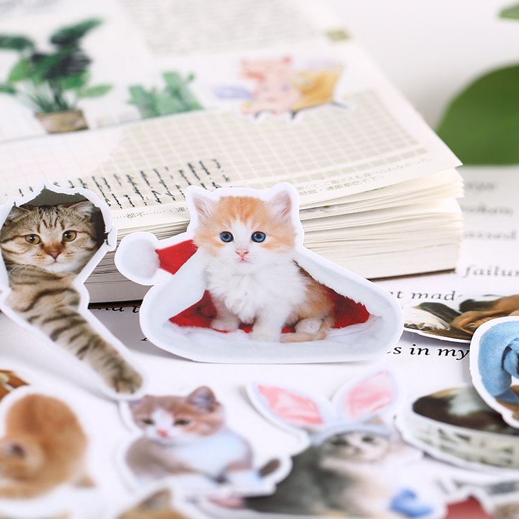21PCS Korean Cute Cat Stickers Mobile Phone Diy Photo Album Waterproof Translucent Lovely Decorative Material Around A Meow