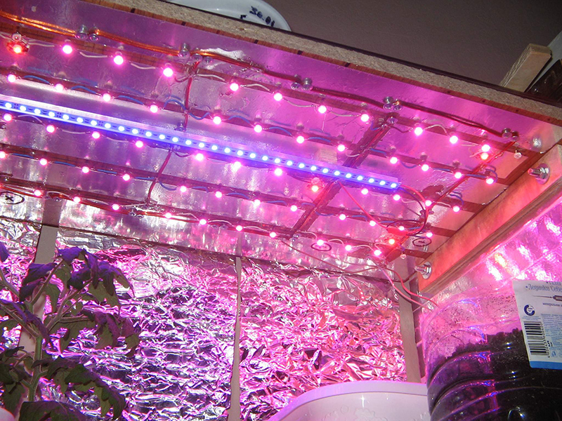 1W-100W LED GROW CHIP-17