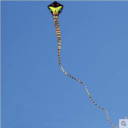 Toys & Hobbies Free Shipping New Listing High Quality Power Snake Kite /cobra Kites With Handle Line Good Flying Delaying Senility Kites & Accessories