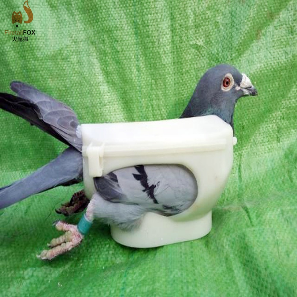 free shipping New Pigeons holder dove special medicine injection fixer 1 pcs vitaly ring