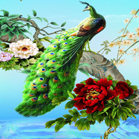 2016 Sale Fashion 5D Square Diamond Painting Cross Stitch Diamond Embroidery Paste For Peacock And Peony