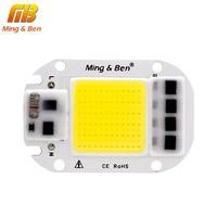 LED COB Bulb No Need Driver 50W 30W 20W 230V 110V Input High Lumen Chip For