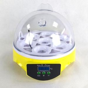Image 5 - Автоматический мини инкубатор для птицы, 220 В, 7 яиц