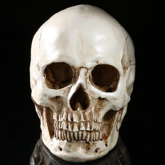 Tienda Online Halloween juguetes simulación 1:1 cráneo humano ...