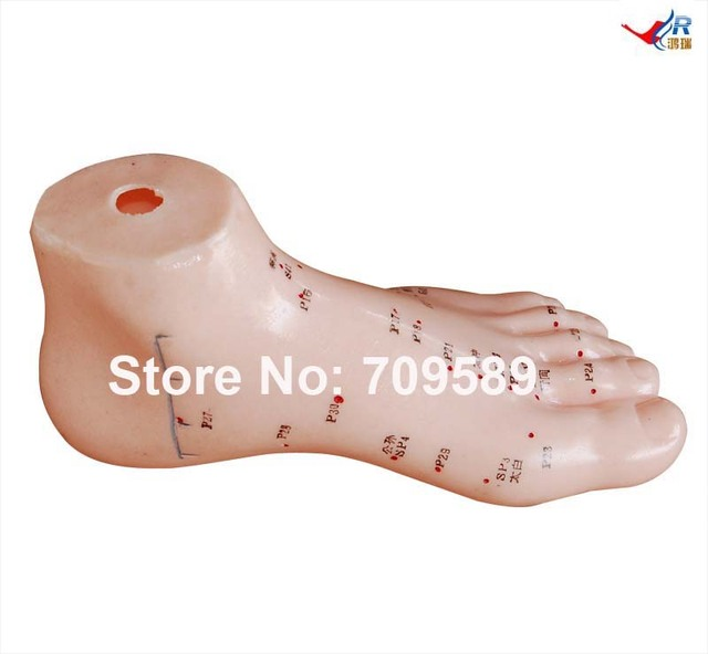 Aliexpress.com : Buy ISO Acupuncture foot Model, Foot ...