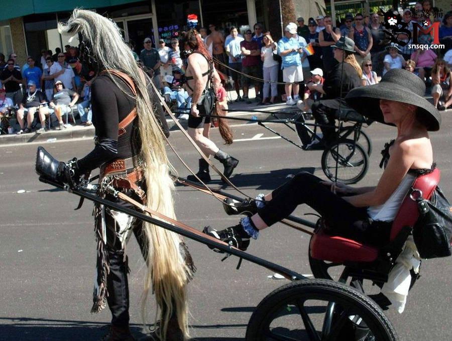 骑士和马奴的简单科普演示:套马的汉子你威武雄壮,飞驰的骏马像疾风一样