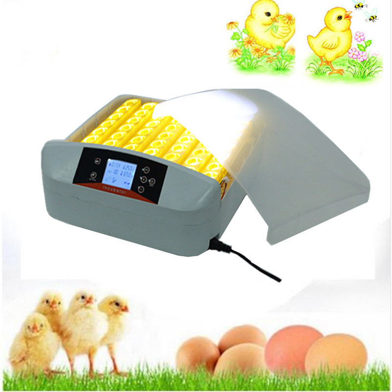 Full-automatic commercial egg incubator for sale 56 Eggs Incubator Hatchery with LED light for chicken quail egg
