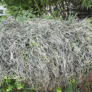 Image 5 - Ghillie Suit Desert Durable Breathable Mesh Lining Hunting Camouflage Sniper Suit Scouting Woodland Sniper Set Kits