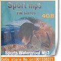 2015 Nuevos Deportes MP3 Jugador de Natación Buceo Impermeable MP3 Con Radio FM Con Auriculares De Alta Calidad Auricular 4 GB Música jugadores