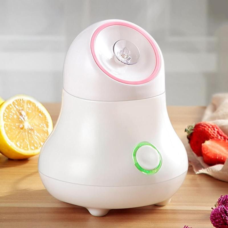 Vaporizador Facial de verduras de frutas, instrumento de belleza de Spa para el hogar, Nano medidor de agua, blanqueador Facial, humidificación