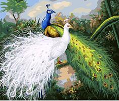 Mahuaf X1135 Royal Burung Burung Merak Hewan Lukisan Mewarnai Dengan