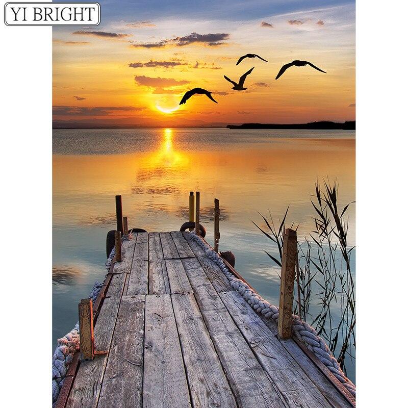 dock birds sunset