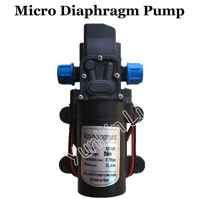 Pompe à eau à haute pression 3L/min Micro pompe à membrane électrique en plastique 12 V/100 W pompe à eau auto-amorçante à grand débit