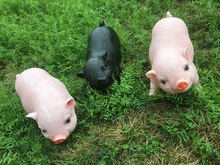 Resin Pig Figurines Modern Decoration Lucky Craft  Polyresin porket gruntling Piggy Home and Garden