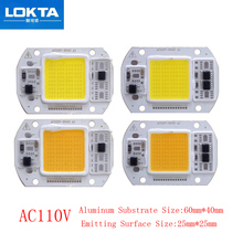 цена 10PCS/LOT LED Lamp Chip COB 25W 15W AC110V light beads Cold/Warm White Smart IC For DIY Spotlight Floodlight онлайн в 2017 году