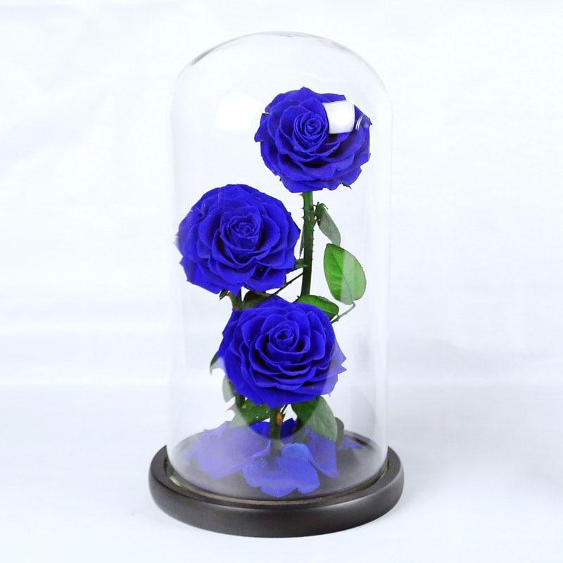 3 royal blue