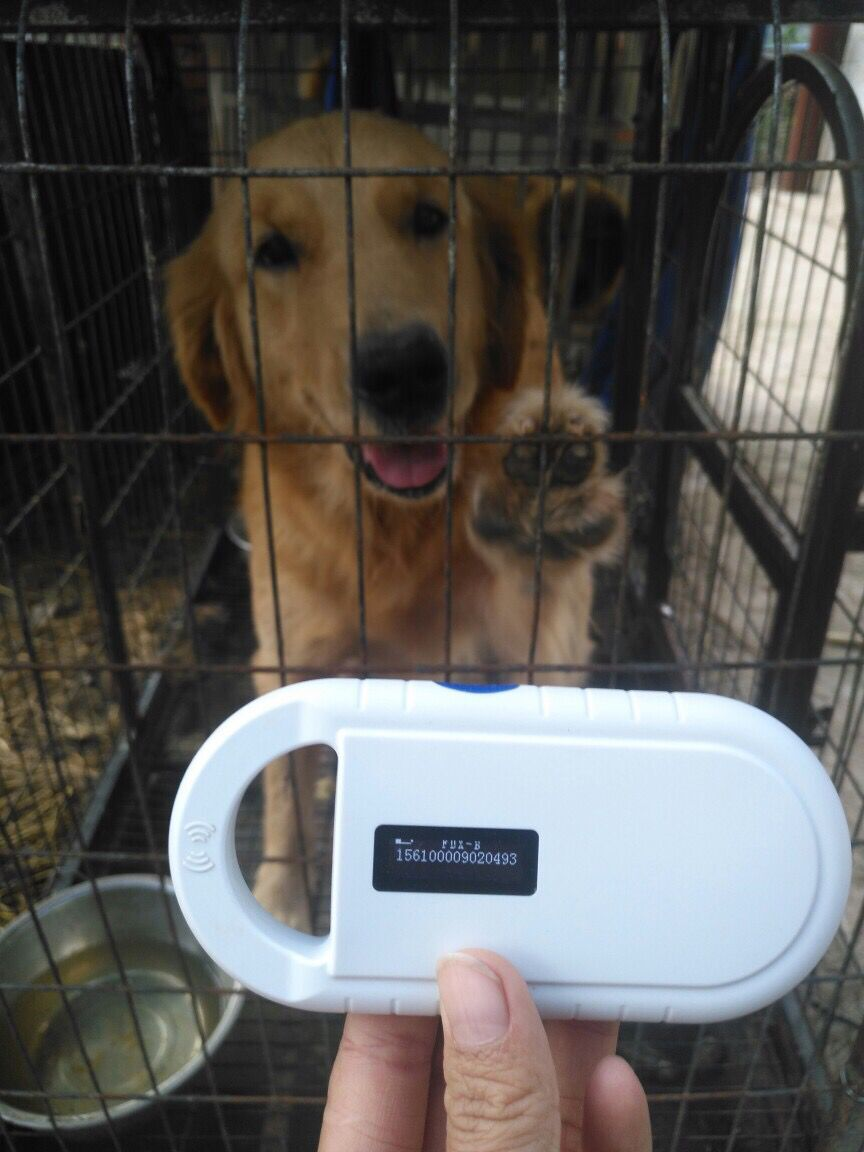 low frequency cheap rfid handheld Animal chip tag reader 134.2khz Fdx-b pet microchip scanner for Injection Microchip