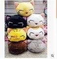Novo japonês dos desenhos animados dormir cat boneca de brinquedo de pelúcia 30 cm criativo presente de aniversário decoração de casa animais cat brinquedos de pelúcia de aniversário presente