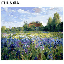 CHUNXIA Painting By Numbers DIY Framed Oil Paint Pictures Wall Art Home Decor Unique Gift A006(China)