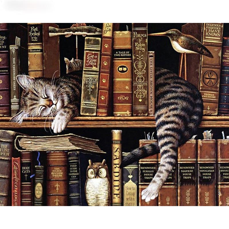 shelves cats