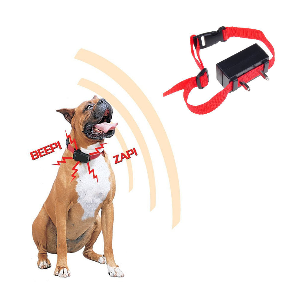 Shock Collar To Stop Dog Barking