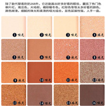 16 color Eye Shadow Helen beauty matte nude makeup ins net red  decay urban eyeshadow lazy eye shadow earth