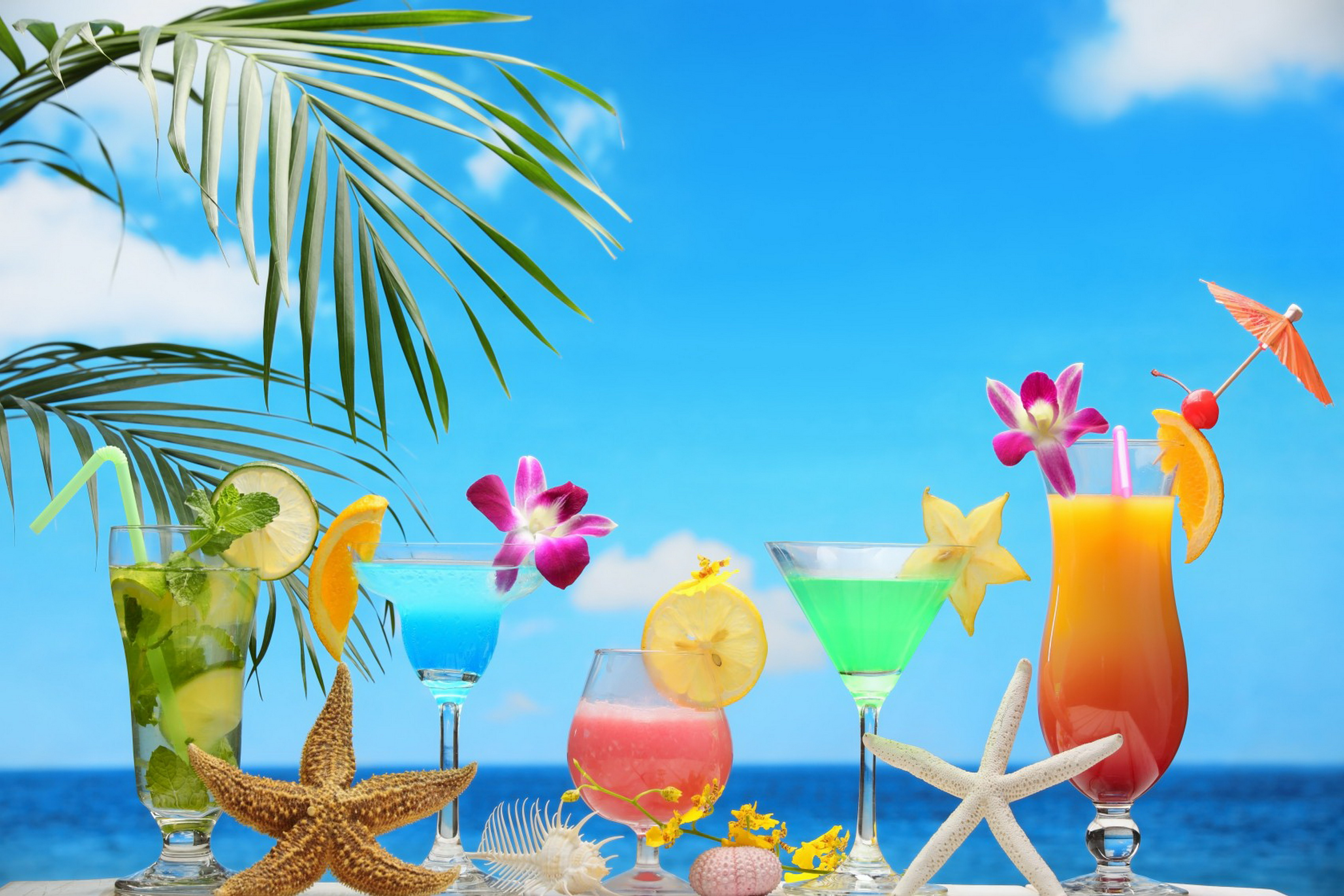 Home decoration tropical holiday mood drink fresh fruit for Summer beach decor