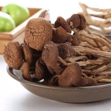 Pure natural, high quality agrocybe root chaxingu tea tree mushroomdried food extremely nutritious supplement free shipping