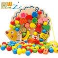 Mwz erizo collar de cuentas de madera montaje de frutas bloques coloridos educativos juguetes para niños entre padres e hijos juego interactivo