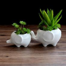 KEYBOX Kawaii Animals Ceramic Flowerpot 2 Styles Elephant Planter Cute White Succulent Plants Flower Pot Ceramic Bonsai Pots