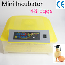 Digital 48 Eggs Full Automatic Chicken Bird Incubator Transparent CE Approved Excellent Quality chicken duck turkey bird egg incubator transparent plastic incubator ce approved full automatic incubator for household