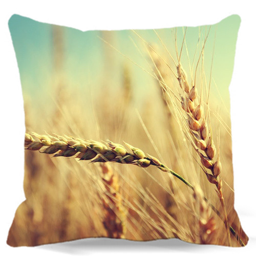 Ripe wheat gold yellow Square Cotton polyester soft cushion cover for Home car sofa chair decorative 40 45 48 cm